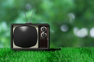 Darf der Gerichtsvollzieher meinen Fernseher per Austauschpfändung beschlagnahmen und mir stattdessen ein Schwarzweißgerät hinstellen?