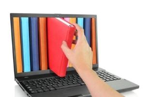 Infos über eine Privatinsolvenz: Eine Auskunft kann online eingeholt werden.